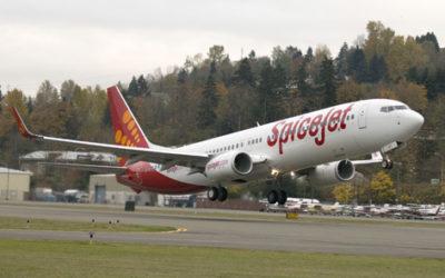 Pilot Cium Pramugari di Pesawat, Lisensi Dicabut